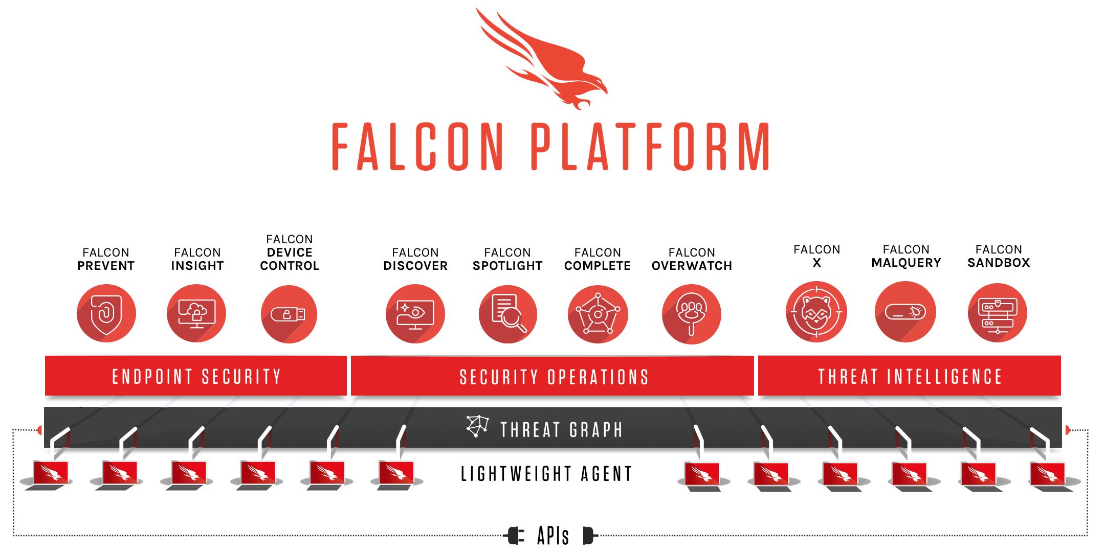 Falcon Platform Infographic